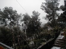 nevada7.jpeg